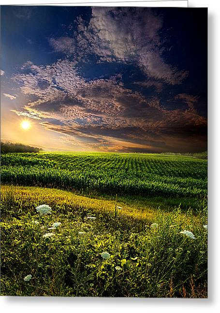 Geographic Greeting Cards - Early Rise Greeting Card by Phil Koch