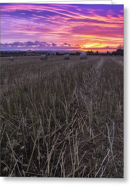 Greeting Card featuring the photograph Early Rise  by Stewart Scott