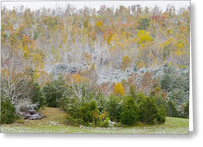 Early Snow Fall Greeting Card