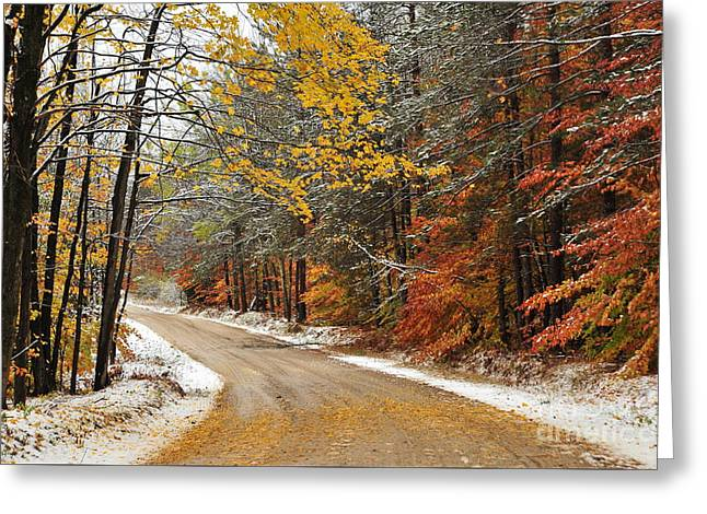 Early Snow Greeting Card by Terri Gostola