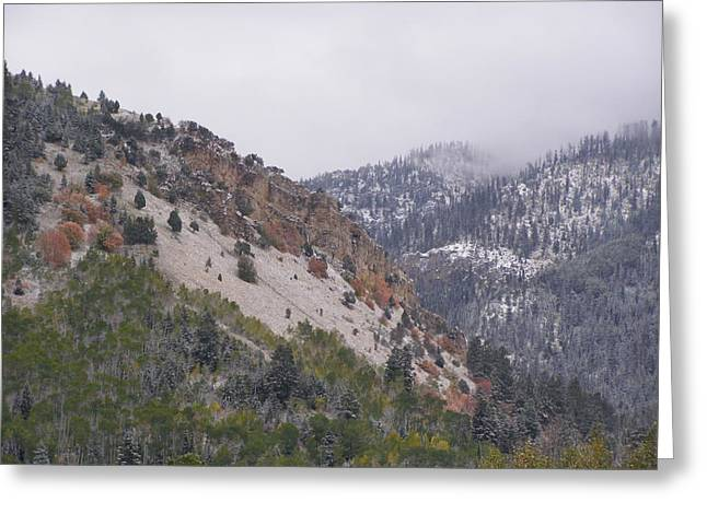Greeting Card featuring the photograph Early Snows by DeeLon Merritt