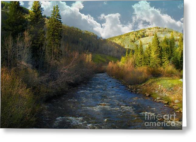 Early Spring Delores River Greeting Card by Annie Gibbons