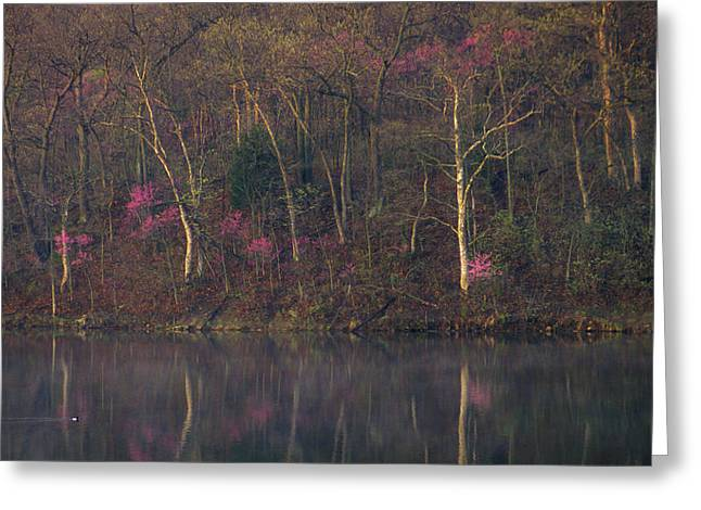Early Spring Lake Shore Greeting Card