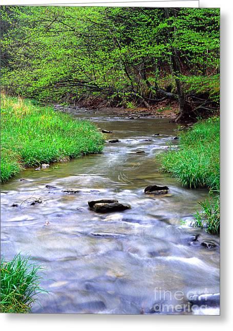 Early Spring Rushing Stream Greeting Card by Thomas R Fletcher