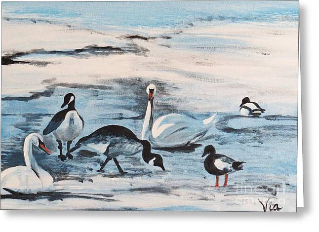 Early Spring Thaw With Ducks And Geese Greeting Card