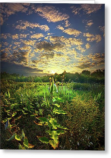 Earth Life Greeting Card by Phil Koch