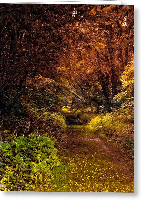 Earth Tones In A Illinois Woods Greeting Card by Thomas Woolworth
