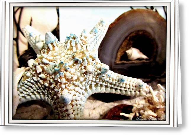 Starfish Posters Greeting Cards - Earths Jewels Greeting Card by Danielle  Parent