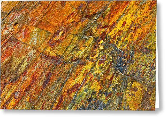 Earths Palette Greeting Card by Karon Melillo DeVega