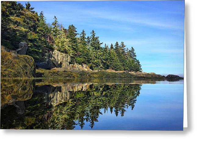 East Coast Reflection Greeting Card by Christine Sharp