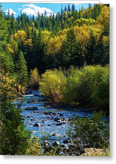 Greeting Card featuring the photograph East Fork Autumn by Jason Coward