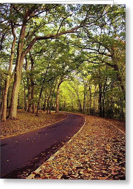 East Harbor Fall Drive Greeting Card by Shawna Rowe