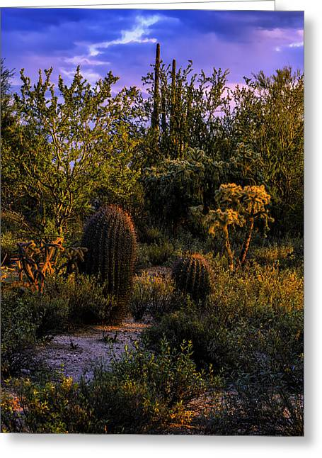 East Of Sunset V40 Greeting Card