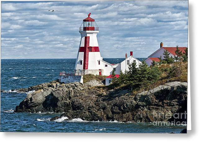 Best Sellers -  - Maine Lighthouses Greeting Cards - East Quoddy Lighthouse Greeting Card by John Greim