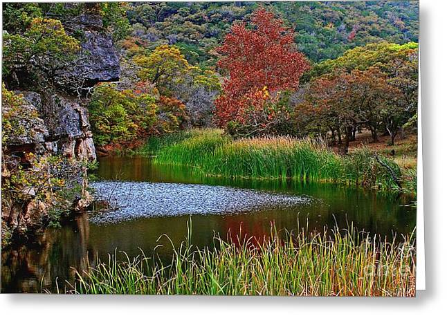 East Trail Pond At Lost Maples Greeting Card