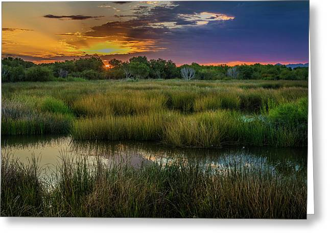 East Wetlands Sunrise Greeting Card