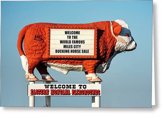 Eastern Montana Fairgrounds Cow Greeting Card by Todd Klassy