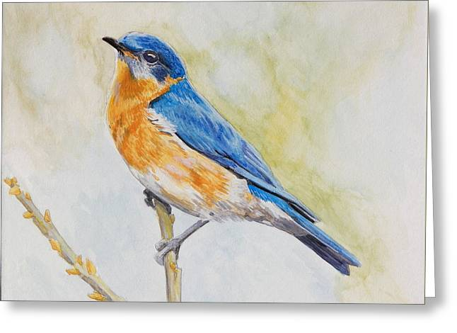 Greeting Card featuring the painting Eastern Mountain Bluebird by Robert Decker