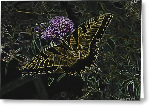 Eastern Tiger Swallowtail Butterfly - Neon Glow Greeting Card by Scott D Van Osdol