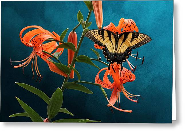 Eastern Tiger Swallowtail Butterfly On Orange Tiger Lily Greeting Card