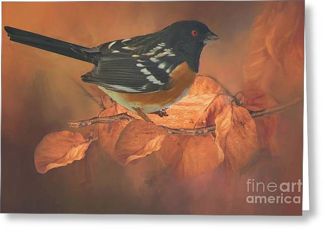 Spotted Towhee In Autumn Greeting Card by Janette Boyd