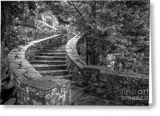 Eastern University Stone Stairway Detail Greeting Card by University Icons