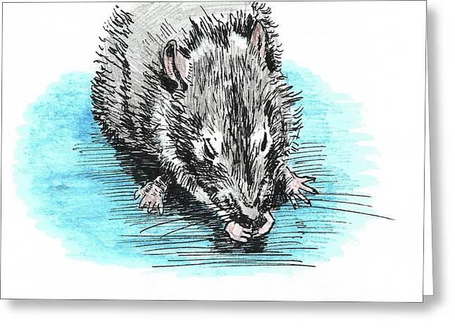 Eating Rat Greeting Card