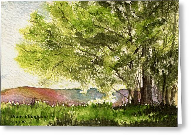 Echoes Of Summer Greeting Card by Diane Ellingham