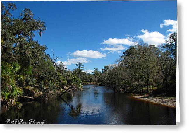 Greeting Card featuring the photograph Econlockhatchee River by Barbara Bowen