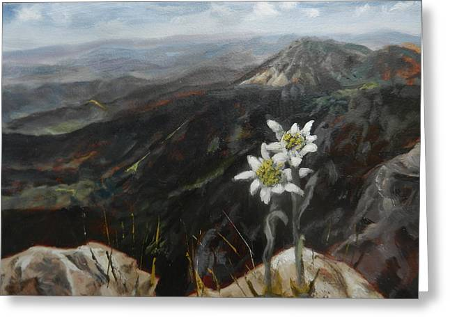 Edelweiss Moment Greeting Card