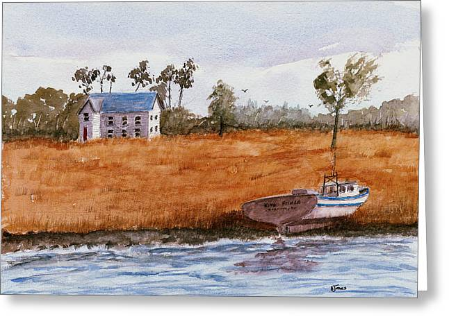 Edge Of The Swamp Greeting Card by Barry Jones