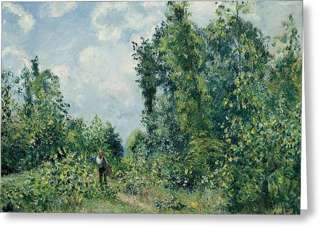 Edge Of The Woods Greeting Card by Camille Pissarro