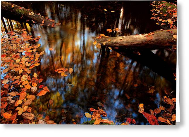 Edge Of Wishes Greeting Card by Mike Eingle