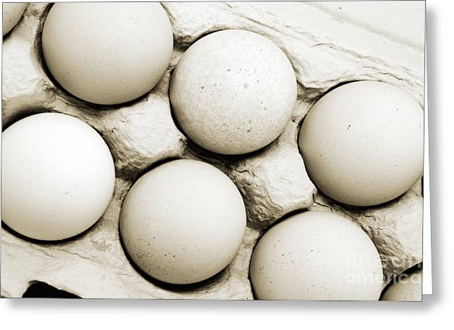 Fresh Eggs Greeting Cards - Edgy Farm Fresh Eggs Greeting Card by Andee Design