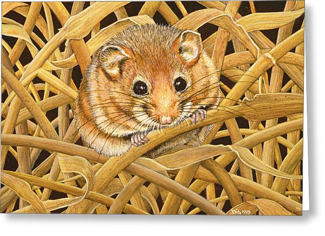 Edible Dormouse Greeting Card by Ditz