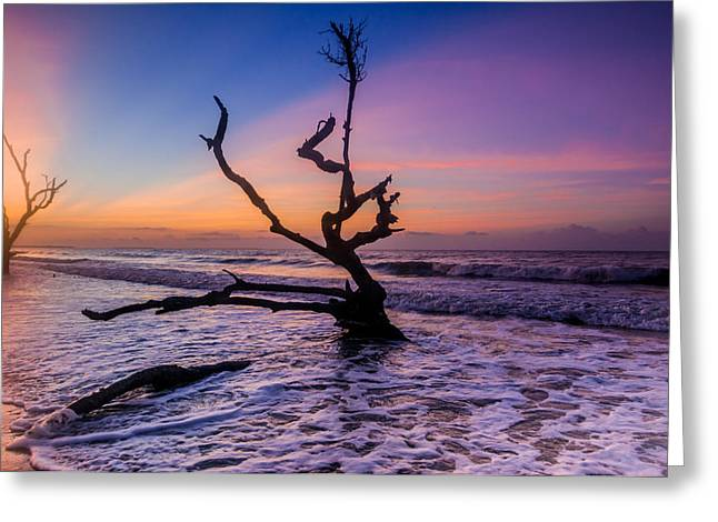 Edisto Dawan Greeting Card