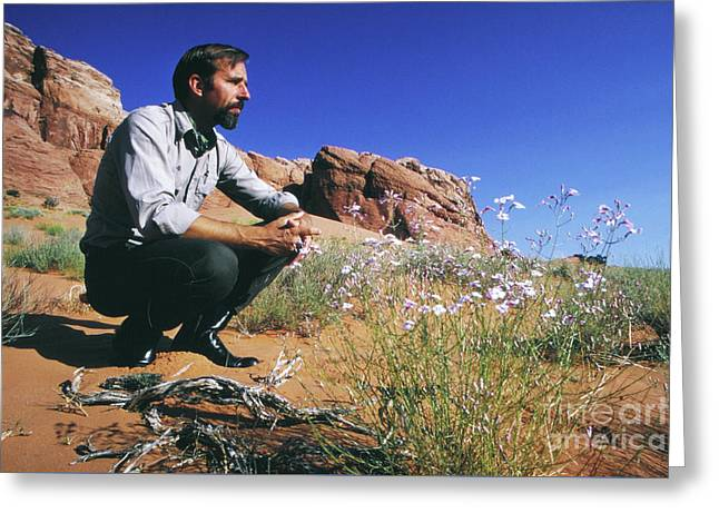 Edward Abbey, Author Of Desert Solitaire, 1969 Greeting Card