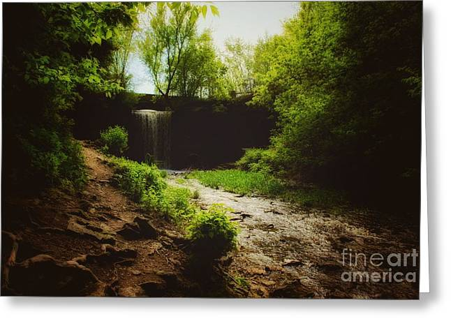 Greeting Card featuring the photograph Eerie Path At Wequiock Falls by Mark David Zahn