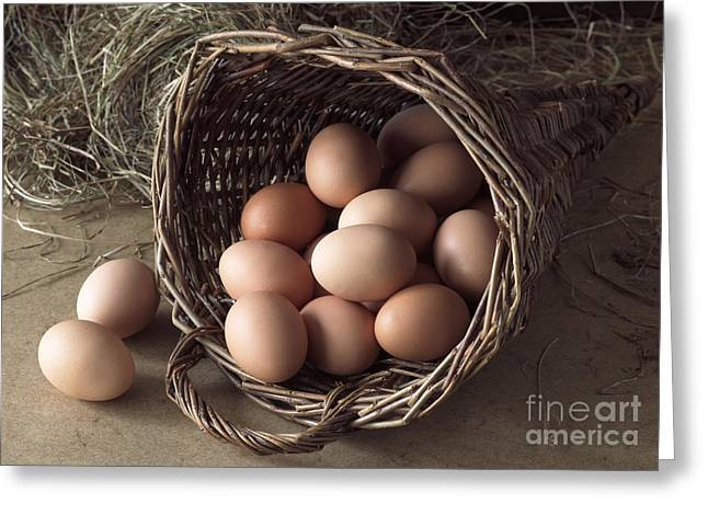 Eggs In Wicker Cornucopia Greeting Card by Gerard Lacz