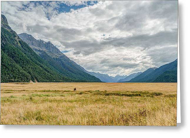 Eglinton Valley In Fiordland National Park In New Zealand Greeting Card by James Udall
