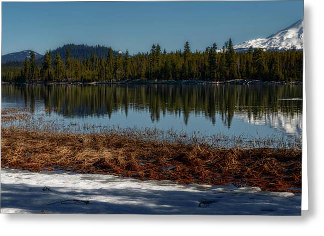 Greeting Card featuring the photograph Egret At Lava Lake by Cat Connor