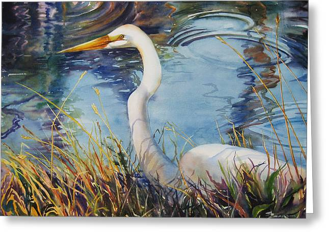 Egret In Cameron Marsh Greeting Card by Sue Zimmermann