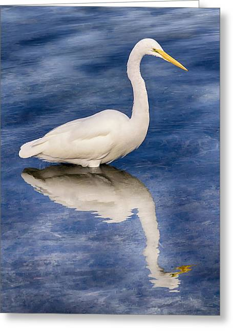 Egret Reflection On Blue Greeting Card
