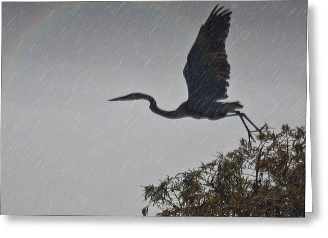 Egret Silhouette Greeting Card by Bill Perry
