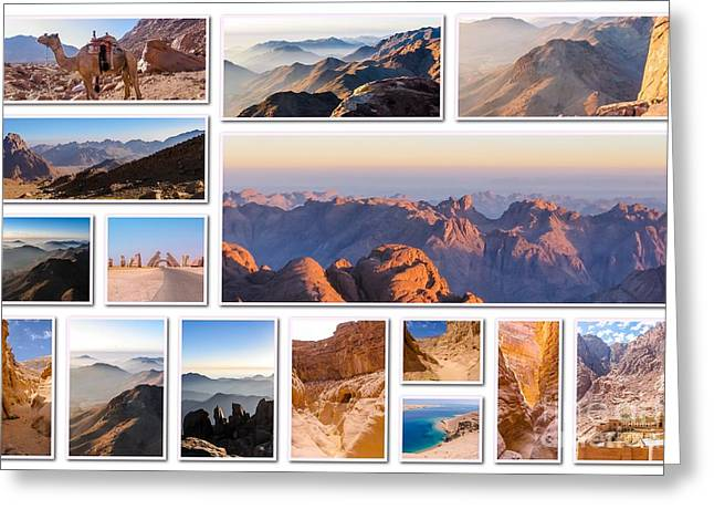 Egypt Sinai Collage Greeting Card by Benny Marty