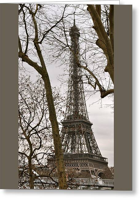 Eiffel Tower Through Branches Greeting Card