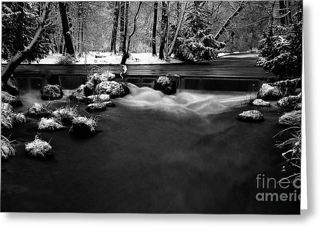 Eisbach In The Winter Greeting Card by Hannes Cmarits