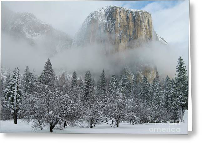 Greeting Card featuring the photograph El Capitan Majesty - Yosemite Np by Sandra Bronstein