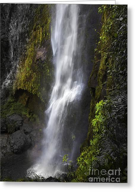 El Chorros Waterfalls Of Giron Xi Greeting Card by Al Bourassa