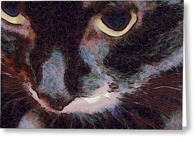 El Gato Greeting Card by Richard Worthington